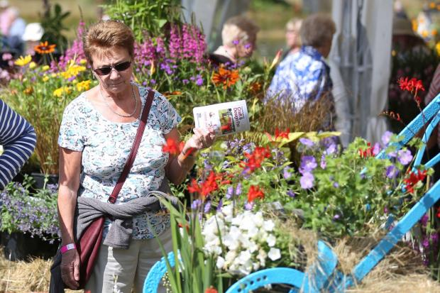 Flower fans enjoy first day of RHS Hyde Hall Flower Show